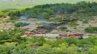 Hatay'da Orman Yakanlar Tutuklandı