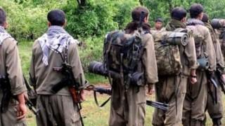Bir PKK'lı terörist daha teslim oldu