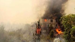Pakdemirli: Yangında bir kişi hayatını kaybetti